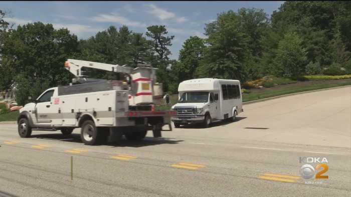 Nemacolin Employee Attacked By Bear