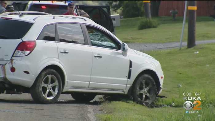 One dead after Route 20 crash in - One News Page [US] VIDEO