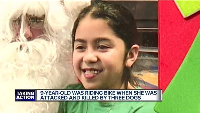 Family identifies 9-year-old girl fatally mauled by 3 dogs on Detroit's west side