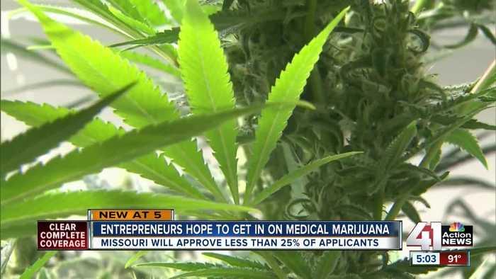 Entrepreneurs hope to get in on medical marijuana