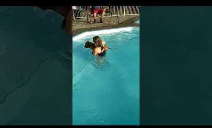 Dog Rides on Girl's Back in Pool and Chews her Hair