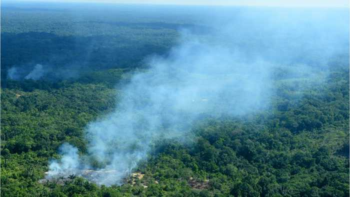 What Is Happening To The  Amazon and What Is It's Future?