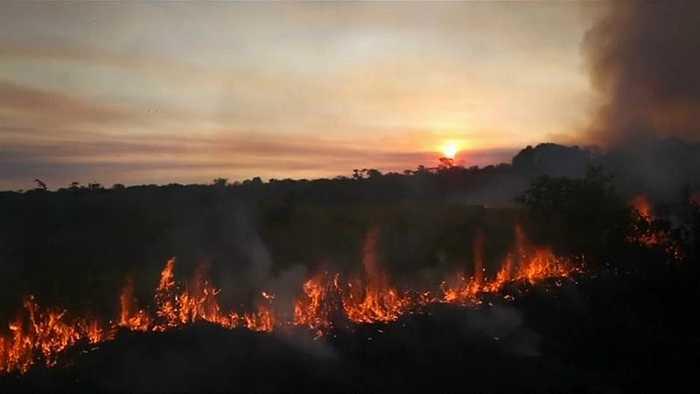 Brazil's Bolsonaro blames Amazon fires on NGOs making 'problems'