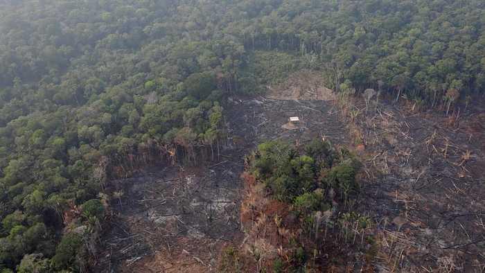 Macron calls fires in the Amazon 'an international crisis'