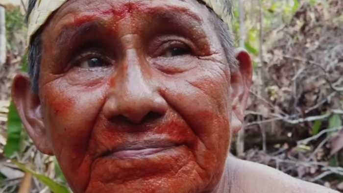 'I will give my last drop of blood for this forest'