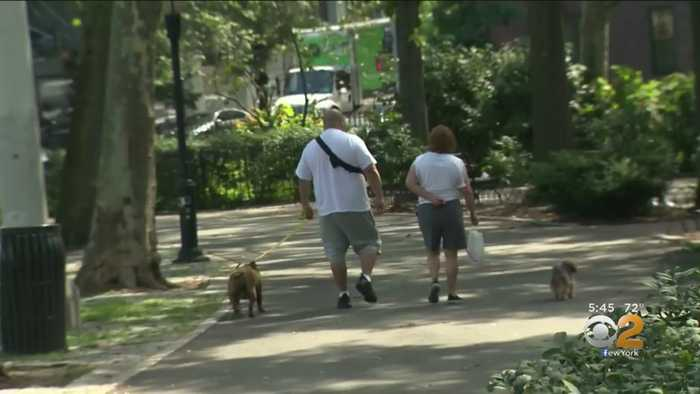 Study Says Pet Owners Have Better Cardiovascular Health