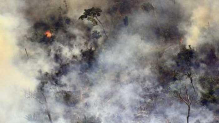 Brazil's president under pressure over Amazon fires