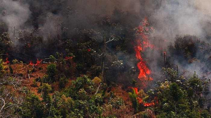 Amazon fire: Bolsonaro sends army after EU threat on trade deal
