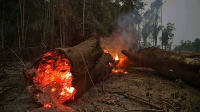 Brazilian troops battle Amazon fire