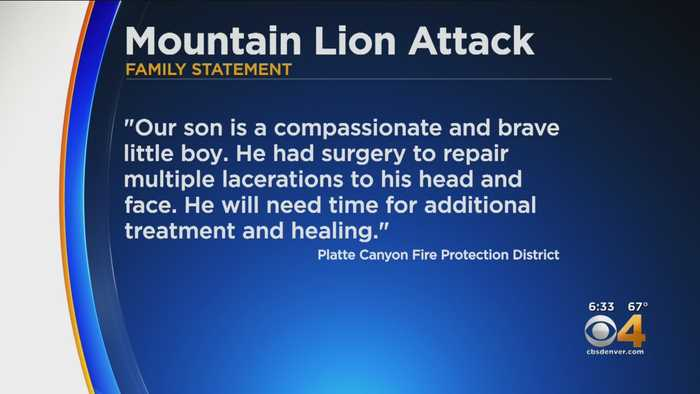 Boy Who Was Bitten By Mountain Lion Remains In Hospital
