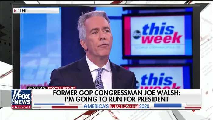 Dan Palmer says Trump shouldn't worry about Joe Walsh's 2020 bid