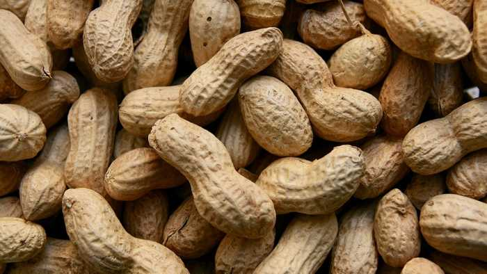 FDA Panel Recommends New Peanut Allergy Treatment