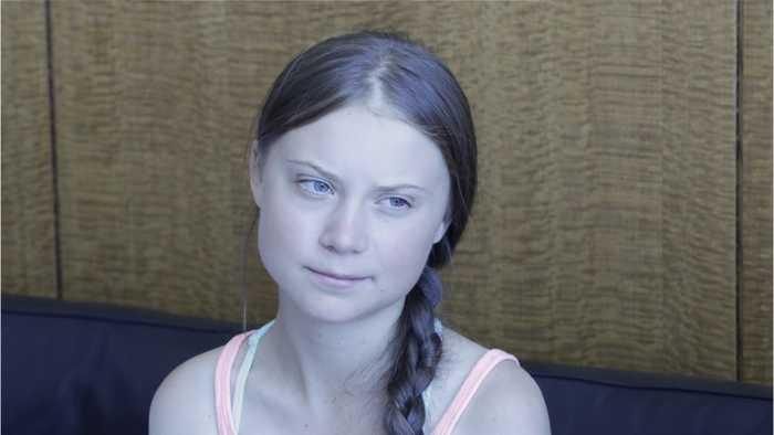 Greta Thunberg To Congress: 'Wake Up'