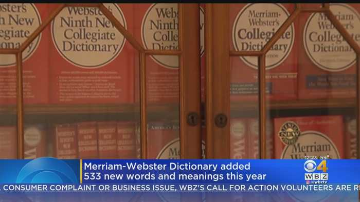 Merriam-Webster Dictionary Added 533 New Words And Meanings This Year