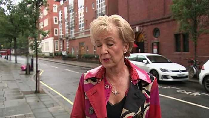 Leadsom calls for a 'fast-track' inquiry into Thomas Cook