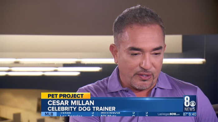 Cesar Millan to appear at Smith Center 'Live Show'