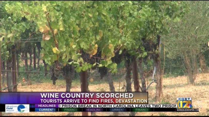 Tourism takes a blow in Sonoma County