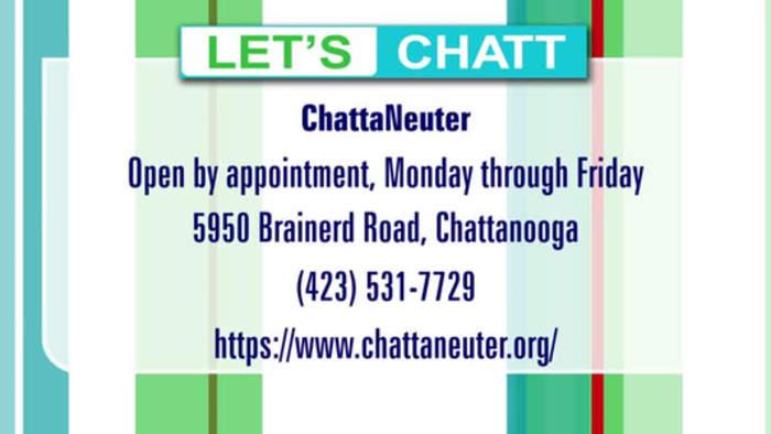 ChattaNeuter Celebrates 10,000 Spays & Neuterings