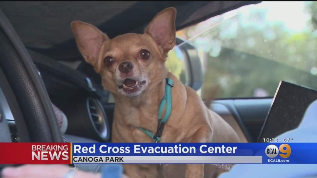 Evacuation Centers Open For Saddle Ridge Fire Evacuees