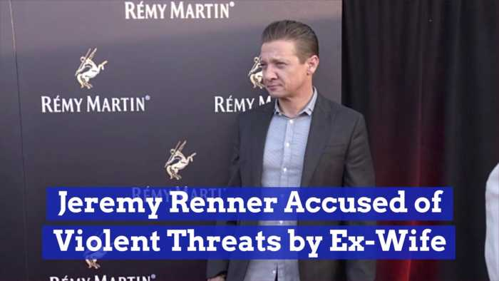 Jeremy Renner Is In A Custody Battle