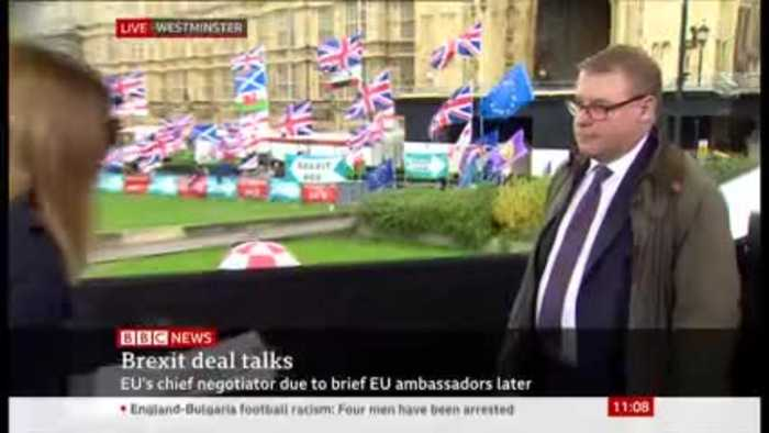 Mark Francois Rebukes 'Stop Brexit' Protester on BBC Live