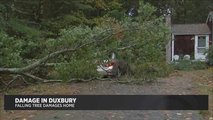 Widespread Damage, Power Outage Follow Overnight Storm