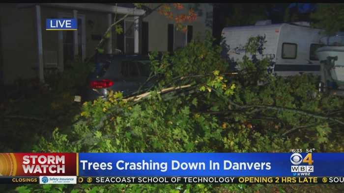 Danvers Hit With Scattered Damage Following Overnight Storm