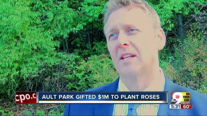 Park Board pumps brakes on planting roses in Ault Park