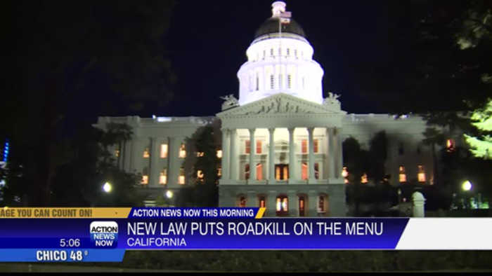 What's for dinner? Roadkill, Gov. Newsom signs law to legally eat roadkill
