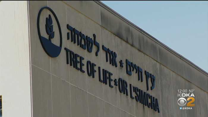 Tree Of Life Planning To Reopen