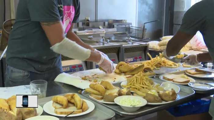 Shortage of yellow perch put fish fries in jeopardy