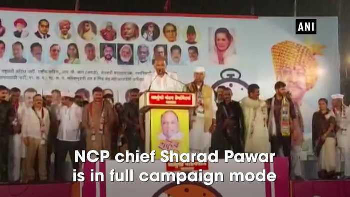 Watch Sharad Pawar continues his speech even as it rains in Maharashtra's Satara