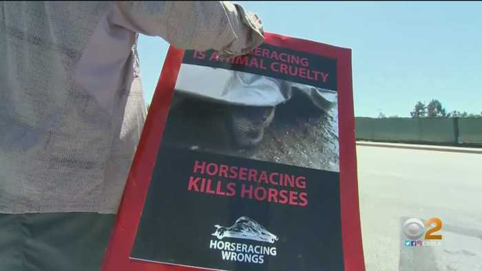 For The 34th Time -- We Write The Headline About A Horse Being Euthanized At Santa Anita Park