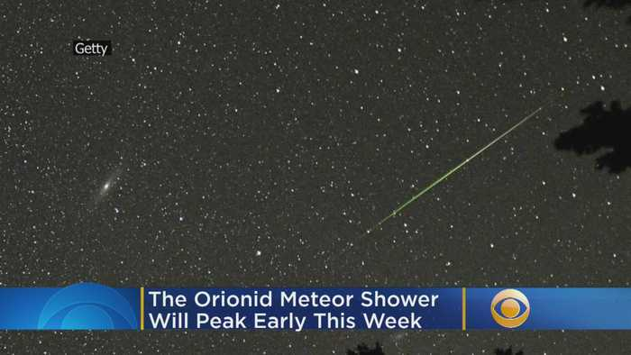 The Orionid Meteor Shower Will Peak Early This Week, Halley's Comet To Be Visible