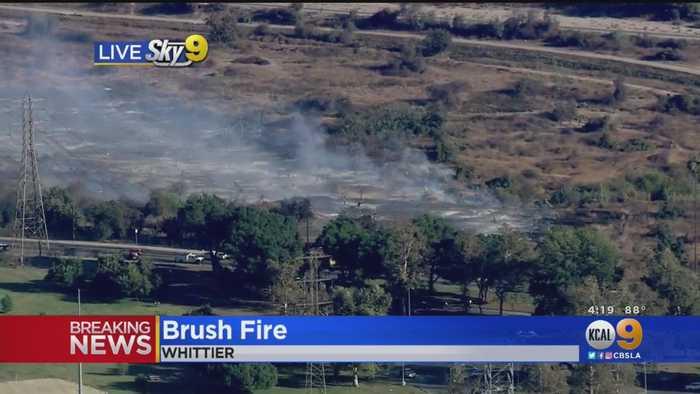 Brush Fire Erupts In Whittier