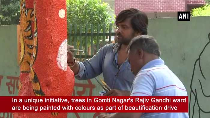 Trees painted with colours as part of beautification drive in Lucknow