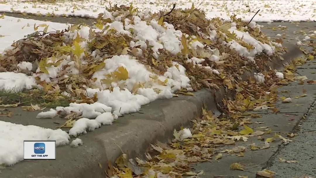 Leaf cleanup is a race against Mother Nature