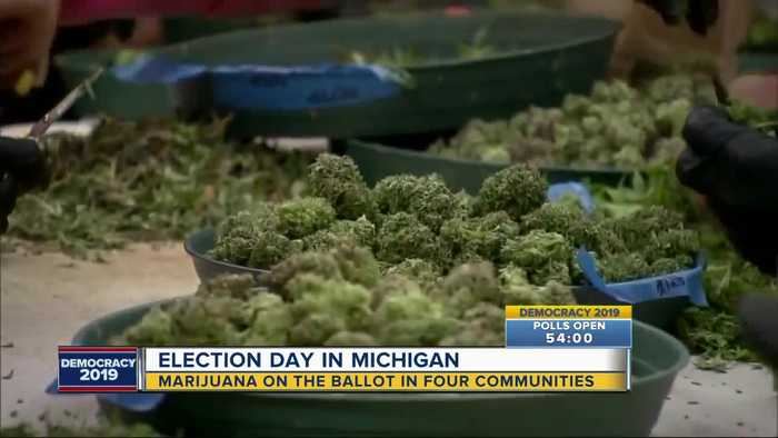 4 communities voting on marijuana proposals Tuesday
