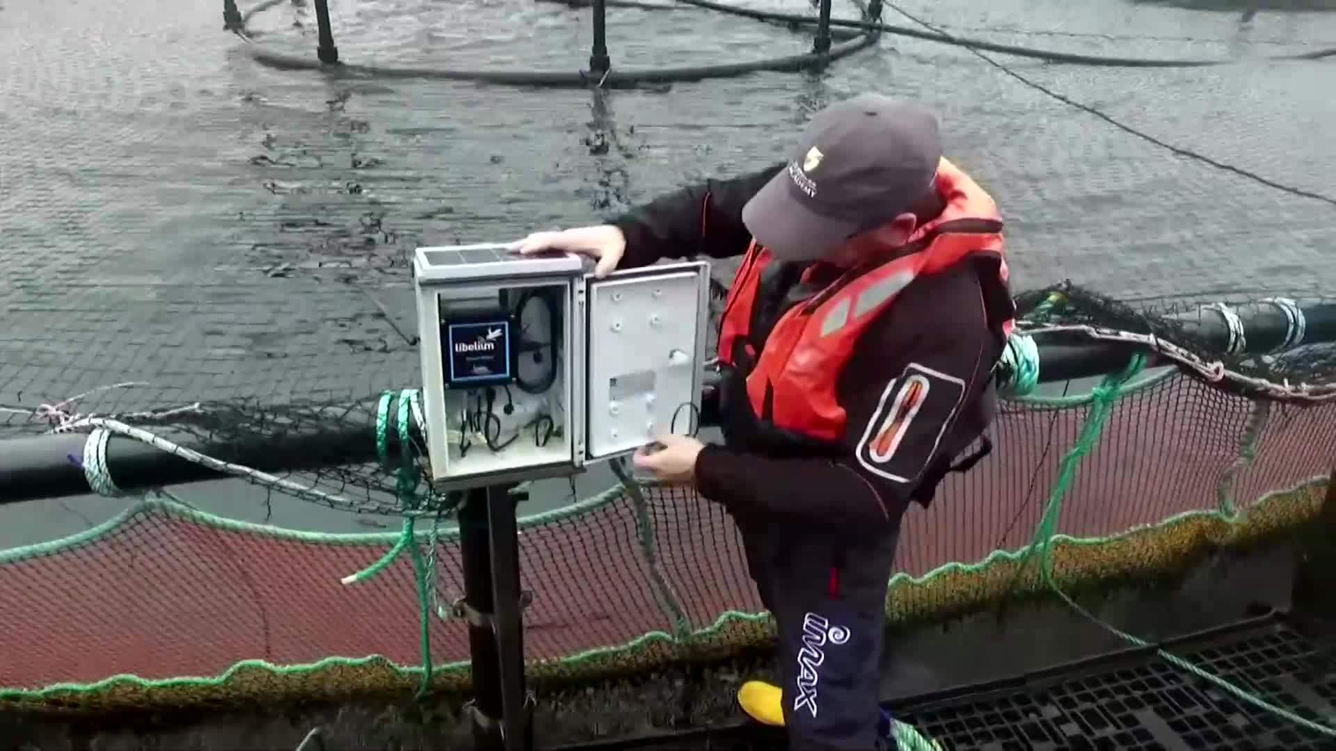How 5G put remote Scottish isles on Tech frontier