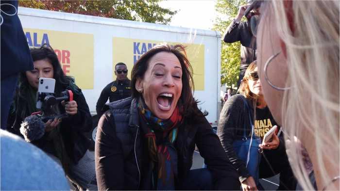 California democrats declare Harris campaign close to over