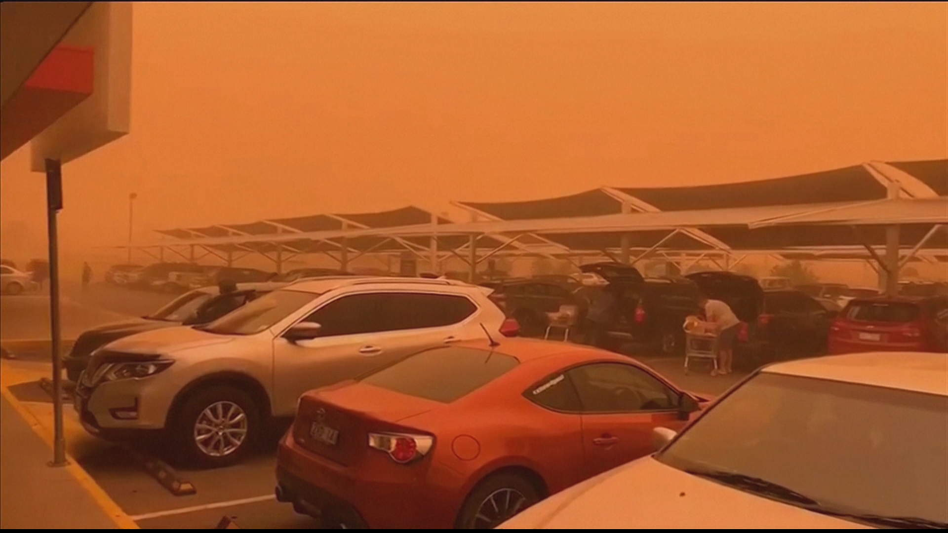 Australia bushfires' smoke blankets Sydney - One News Page ...