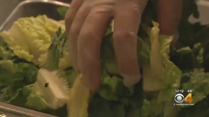 Romaine Lettuce E.coli Outbreak Includes Colorado