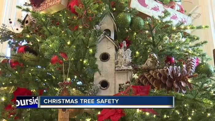 Nampa Fire Department gives Christmas tree safety tips