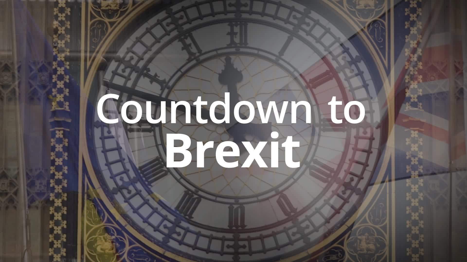 Brexit: 36 days until Britain is scheduled to leave the EU