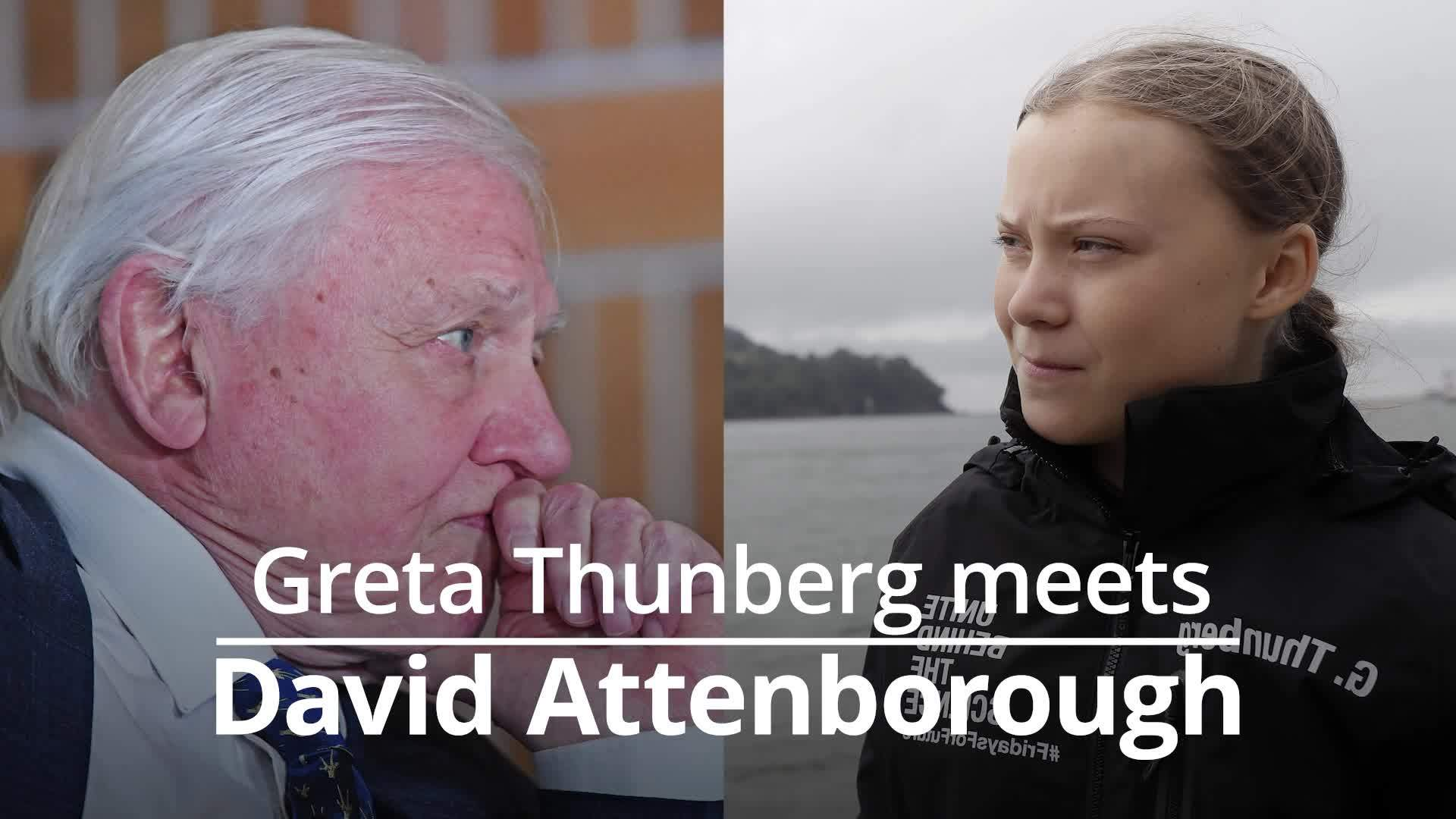 Greta Thunberg meets David Attenborough on Skype