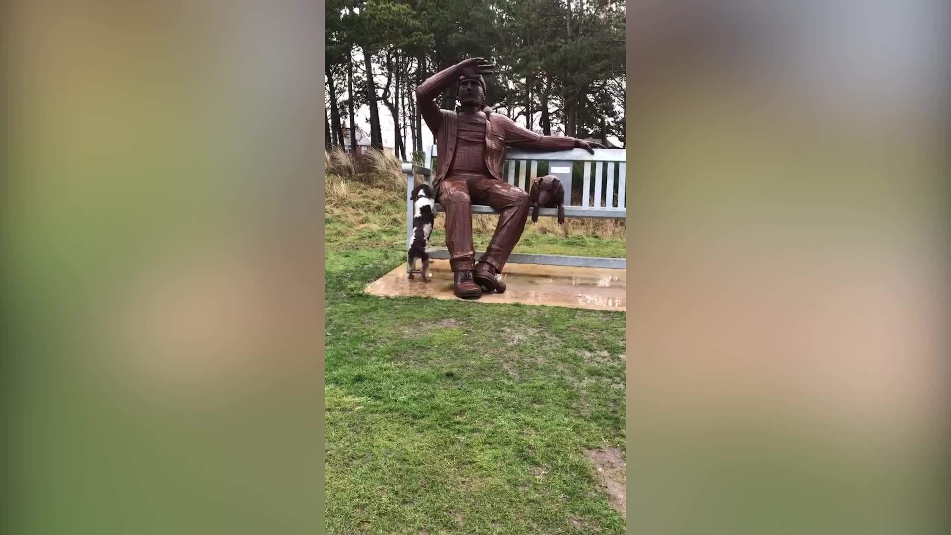 Hilarious video shows a dog pestering a giant STATUE to throw its ball!