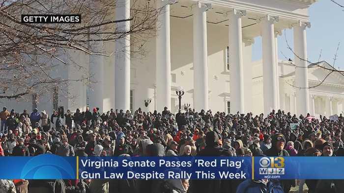 Virginia Senate Passes 'Red Flag' Gun Law, Despite Rally