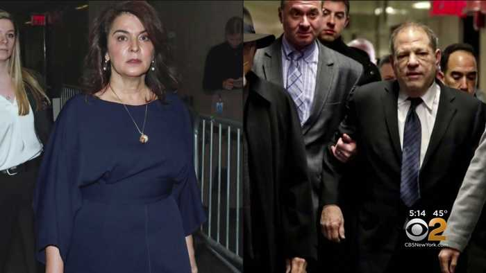 Annabella Sciorra Faces Harvey Weinstein In Court