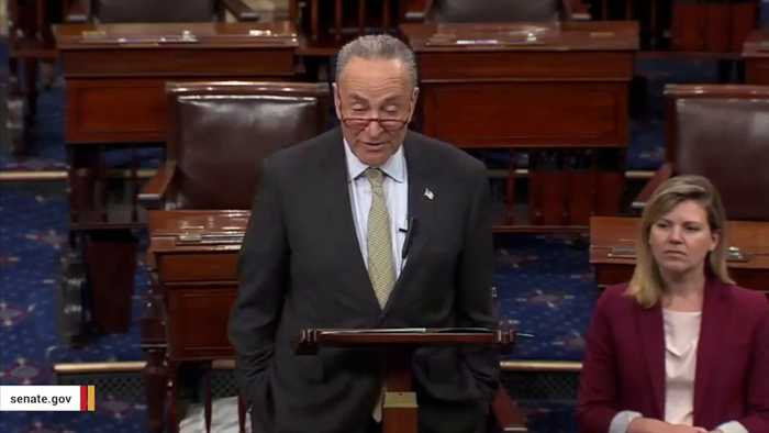 Chuck Schumer Has Reportedly Spent $8,600 On Cheesecake