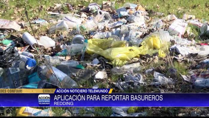 Crean sitio para reportar basureros ilegales